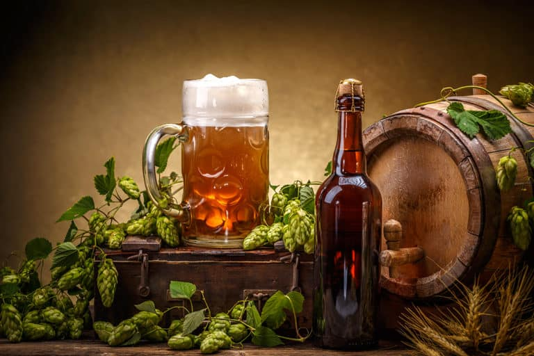 What Are the 4 European Noble Hops